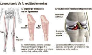 rodilla femenina